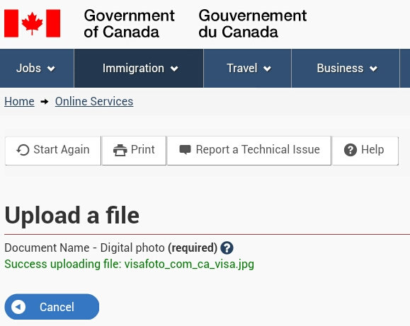 Canada visa photo upload result screen