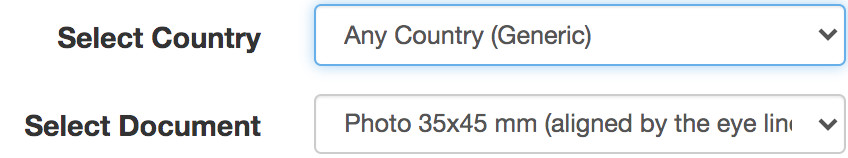 How to choose country and document at Visafoto