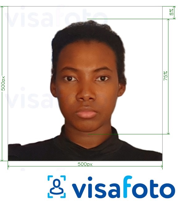 Example of photo for Cameroon visa online 500x500 px with exact size specification