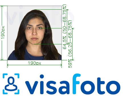 Example of photo for India Visa 190x190 px via VFSglobal.com with exact size specification