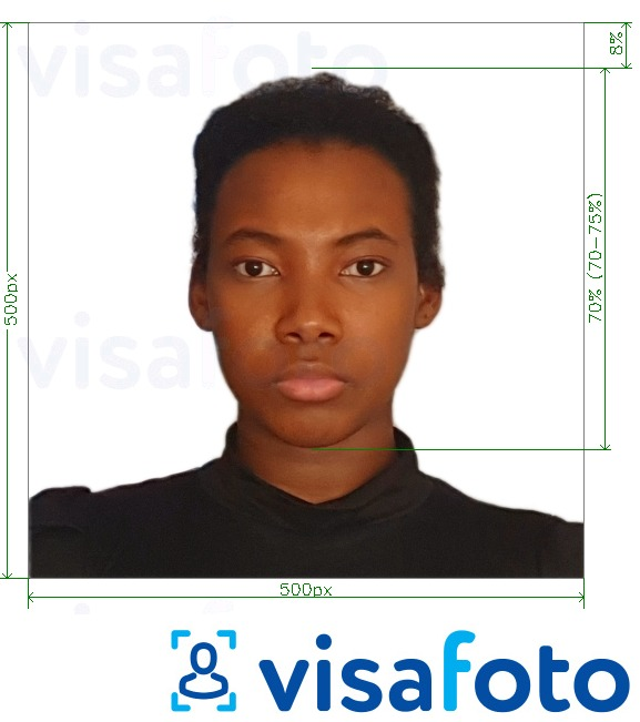 Example of photo for Kenya e-visa online 500x500 pixels with exact size specification