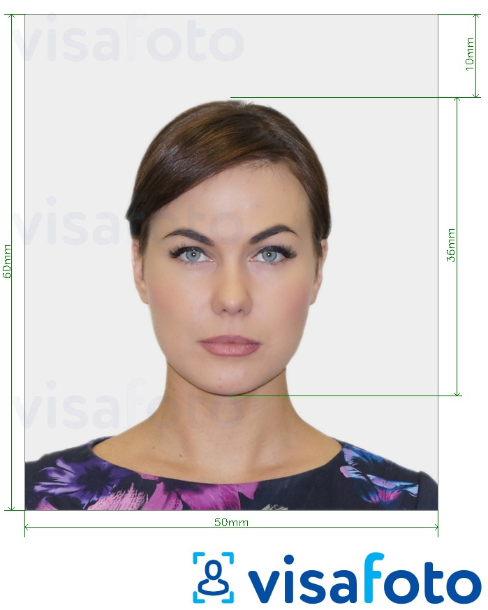 Example of photo for Moldova work and residence permit 50x60 mm (5x6 cm) with exact size specification